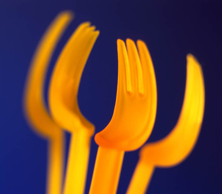 Forks Copyright Frances Balam Art House Photo Design 2013