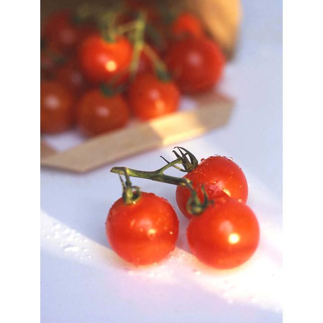 Art House Photo Design Food Tomatoes